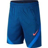 Nike Dri Fit Strike NG